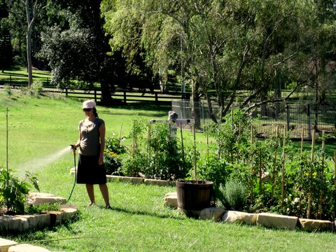 Obaitori - abundant garden